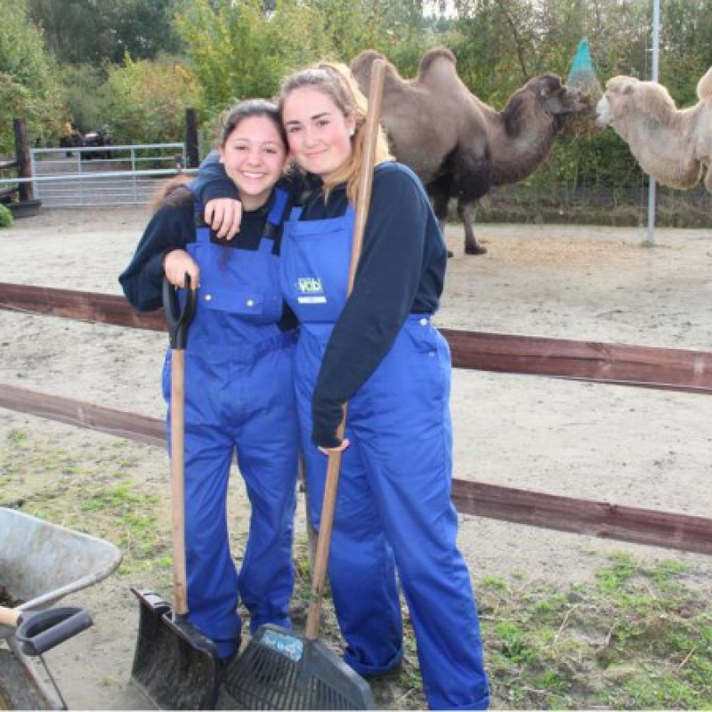 European volunteer - De Zonnegloed - Animal park - Animal refuge centre
